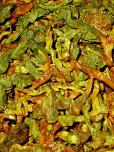 Moonrise's oolong being processed