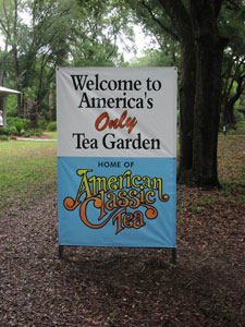Charleston Tea Plantation Welcome Sign