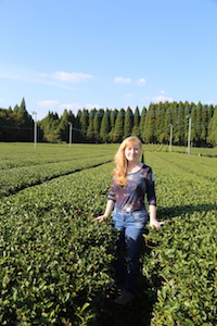 Cynthia Fazekas in a field of tea, on her 2015 tea-buying trip to Japan.