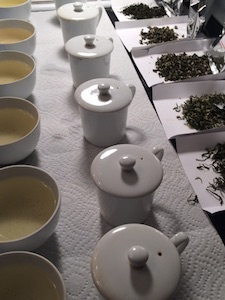 A spread of teas ready for tasting!