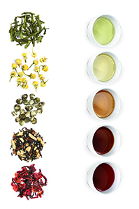 Tea also provides us with a diverse assortment of leaf shapes and colors.